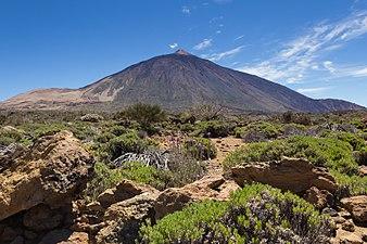 Cañadas del Teide 3.jpg