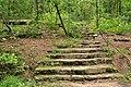 Caddo lake sp tx trail.jpg