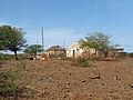 Calabaceira (1).jpg