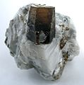Calcite-Phlogopite-usa18abg.jpg