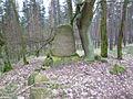 Calvörde, Heinrich Fickendey, Grab auf dem Cloridenberg I.JPG