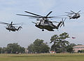 Camp Lejeune Marines utilize air support during Exercise Mailed Fist DVIDS608188.jpg