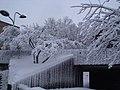 Campus UdeM sous la neige, Montréal 03.jpg