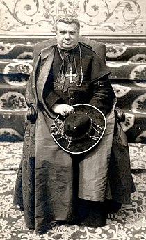 Cardinal Pietro Maffi.jpg