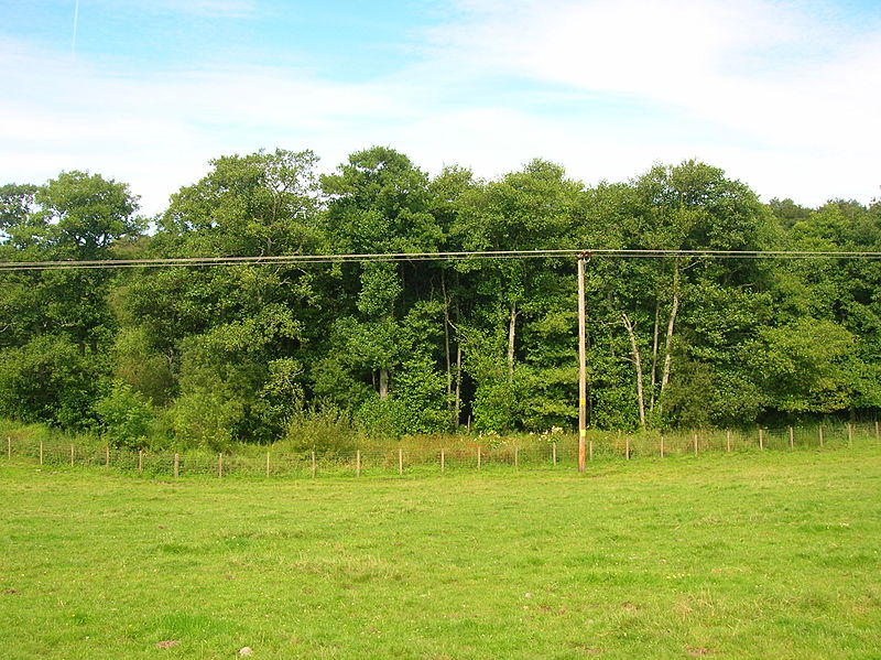 File:Carse Loch site.JPG
