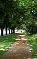 Cedar chip jogging path. INFO IN PANORAMIO DESCRIPTION - panoramio.jpg