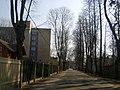 Cerinu - panoramio (1).jpg