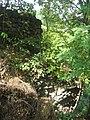 Cetatea de Scaun a Sucevei66.jpg