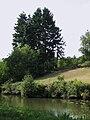 Chécy canal d'Orléans 9.jpg