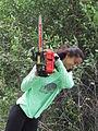 Chainsaw Sabri.jpg
