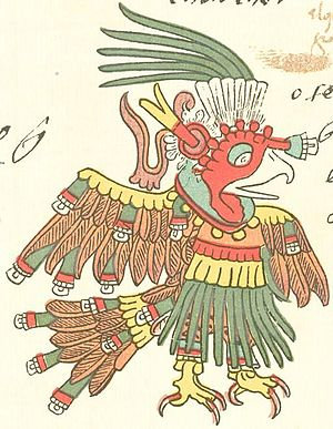 Chalchiuhtotolin - Chalchiuhtotolin, as depicted in the Codex Telleriano-Remensis.