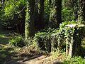 Charleville castle garden.jpg