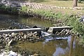 Check dam on McKay Creek west of Hickory Drive west of Largo Florida 02.JPG