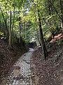 Chemin creux du Crabbegat.jpg