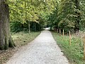 Chemin près Lac Saint Mandé - Paris XII (FR75) - 2021-08-16 - 2.jpg