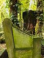Chenstochov ------- Jewish Cemetery of Czestochowa ------- 149.JPG