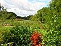 Chidmere Pond - geograph.org.uk - 227850.jpg