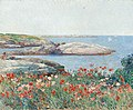 Childe Hassam, Poppies, Isles of Shoals, 1891.jpg