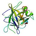 ChymotrypsinA1.jpg