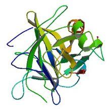 キモトリプシン