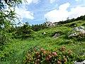Cima del Mandriccione mt.2180 - panoramio.jpg