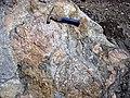 Clast-rich mixtite (Coleman Member, Gowganda Formation, Paleoproterozoic, ~2.3 Ga; Percival Lake roadcut, Ontario, Canada) 14 (32783659577).jpg