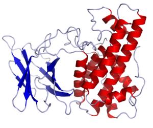 Clostridium perfringens alpha toxin - Image: Clostridium perfringens Alpha Toxin.rsh
