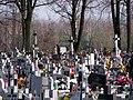 Cmentarz parafialny Wiązownica Kolonia 2012 03.jpg