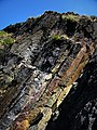 Colours in the cliffs - geograph.org.uk - 543214.jpg