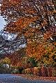 Cottingham IMG 0592 - panoramio.jpg