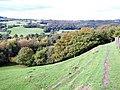 Cown Edge Way footpath - geograph.org.uk - 1519454.jpg
