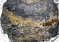 Cretaceous-Tertiary boundary clay (Raton Formation, 65 Ma; southern Colorado, USA) (34782334145).jpg