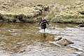 Crossing the Abhainn a' Choilich near Loch Mullardoch - geograph.org.uk - 812235.jpg