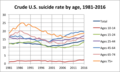 Crude US suicide rate by age 1981-2016.png