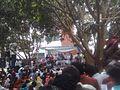 Cultural function at mango garden, islamic university kushtia.jpg