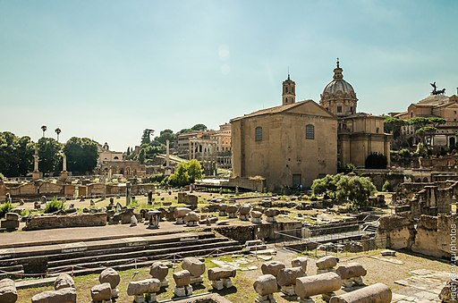 Ruins of Rome's Ancient Senate House. Photo by Alexander Kachkaev, Creative Commons Attribution 3.0 Unported license.