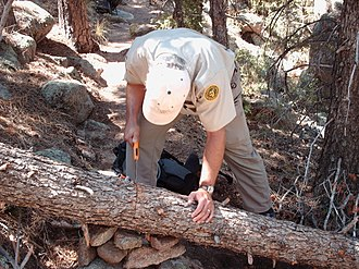 Poudre Wilderness Volunteers - PWV volunteer helps to clear a tree blocking the Grey Rock trail