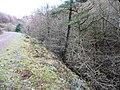 Cwm Gwyddon fach - geograph.org.uk - 654768.jpg