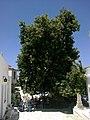 Cyclades Tinos Pyrgos - panoramio.jpg