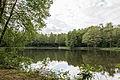 Dülmen, Naturschutzgebiet -Franzosenbach- -- 2014 -- 0039.jpg