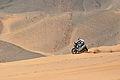Dakar 2010 - Marc Coma.jpg