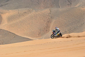 Marc Coma - Coma running in the Dakar Rally 2010, near Copiapó.