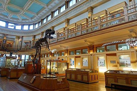 The interior of the Redpath Museum Dawson Gallery - Redpath Museum - McGill University - Montreal, Canada - DSC07893.jpg