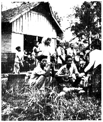 Ma'anyan people - Ma'anyan people in a fruit market in Telang, 1963.