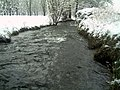 Daystar Frost Colors Glottertal - Mythos Black Forest Photography - panoramio.jpg