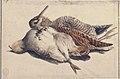 Dead Birds. MET 80.3.203.jpg