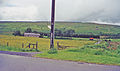Deadwater station site geograph-3405424-by-Ben-Brooksbank.jpg
