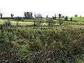 Derryargon, Enniskillen - geograph.org.uk - 374312.jpg