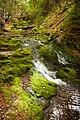 Dickson Falls, Fundy National Park (7617853758).jpg