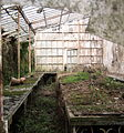 Dilapidated greenhouse 2.jpg